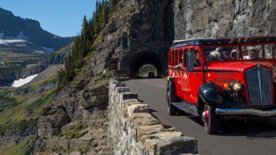 Image of Xanterra red bus at Glacier National Park